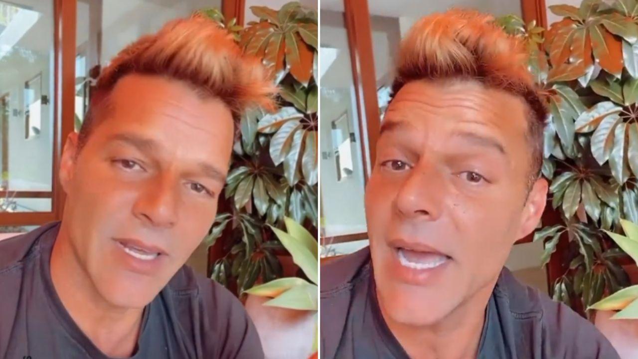 Luego del retoque estético y los memes, Ricky Martin reapareció en las redes y habló con sus fans